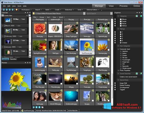 スクリーンショット ACDSee Windows 8.1版