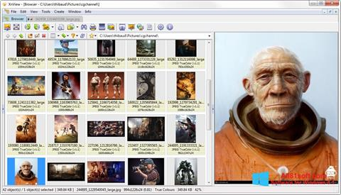 スクリーンショット XnView Windows 8.1版