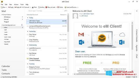 スクリーンショット eM Client Windows 8.1版