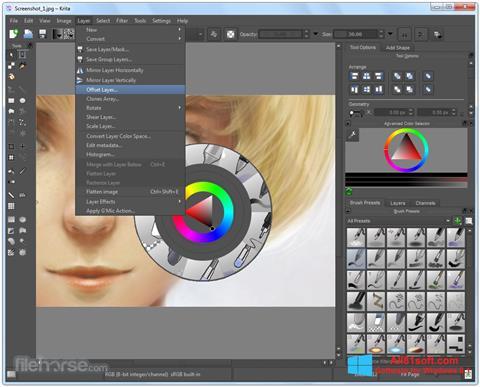 スクリーンショット Krita Windows 8.1版
