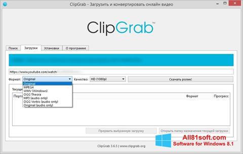 スクリーンショット ClipGrab Windows 8.1版
