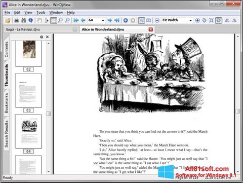 スクリーンショット WinDjView Windows 8.1版
