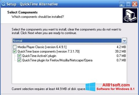 スクリーンショット QuickTime Alternative Windows 8.1版