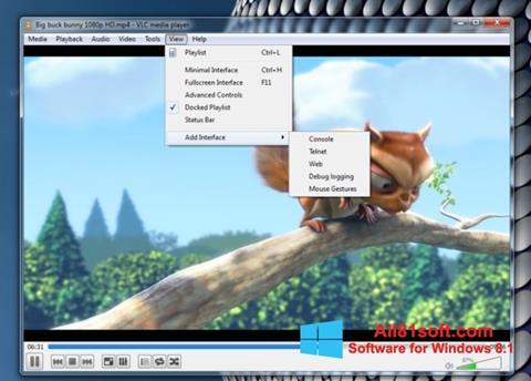 スクリーンショット VLC Media Player Windows 8.1版