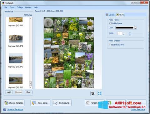 スクリーンショット CollageIt Windows 8.1版