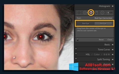 スクリーンショット Red Eye Remover Windows 8.1版