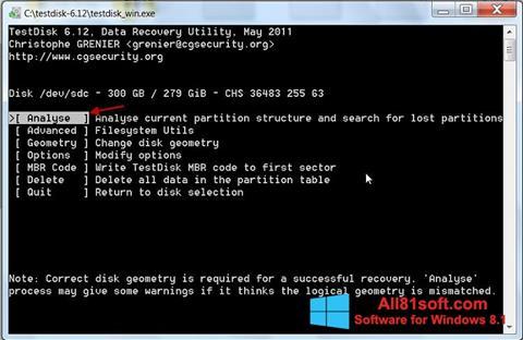 スクリーンショット TestDisk Windows 8.1版