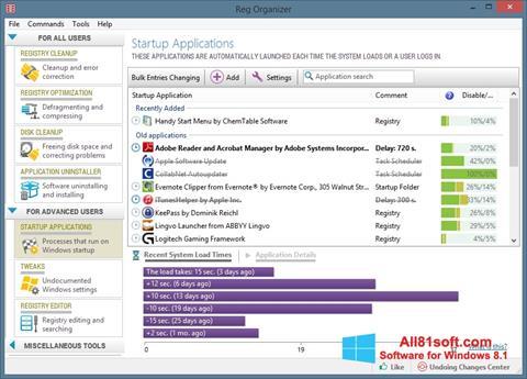 スクリーンショット Reg Organizer Windows 8.1版
