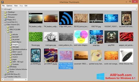 スクリーンショット IrfanView Windows 8.1版
