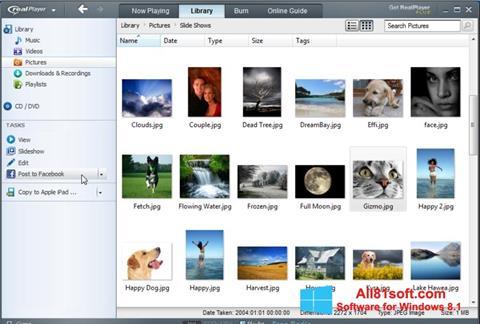 スクリーンショット RealPlayer Windows 8.1版